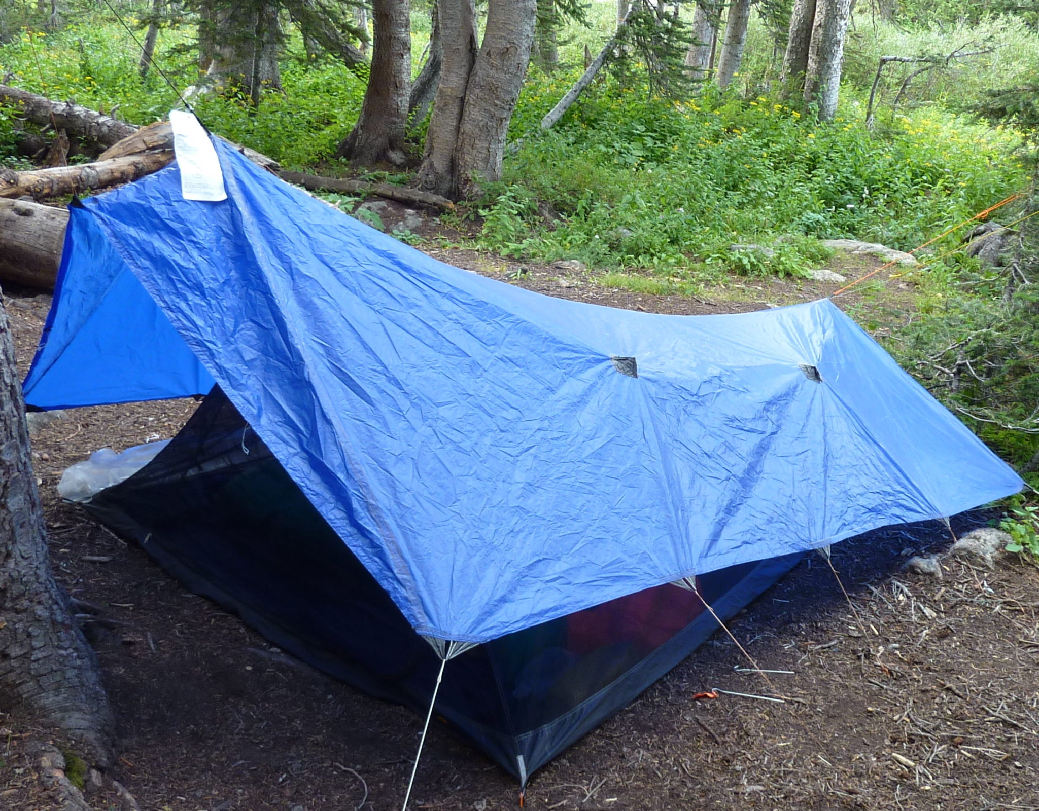 Porter modified Rayu0027s ... & How to Pitch a Bedroom in the Woods | backpacking tents and tarps