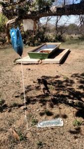 Porter's RapidPure filtering water